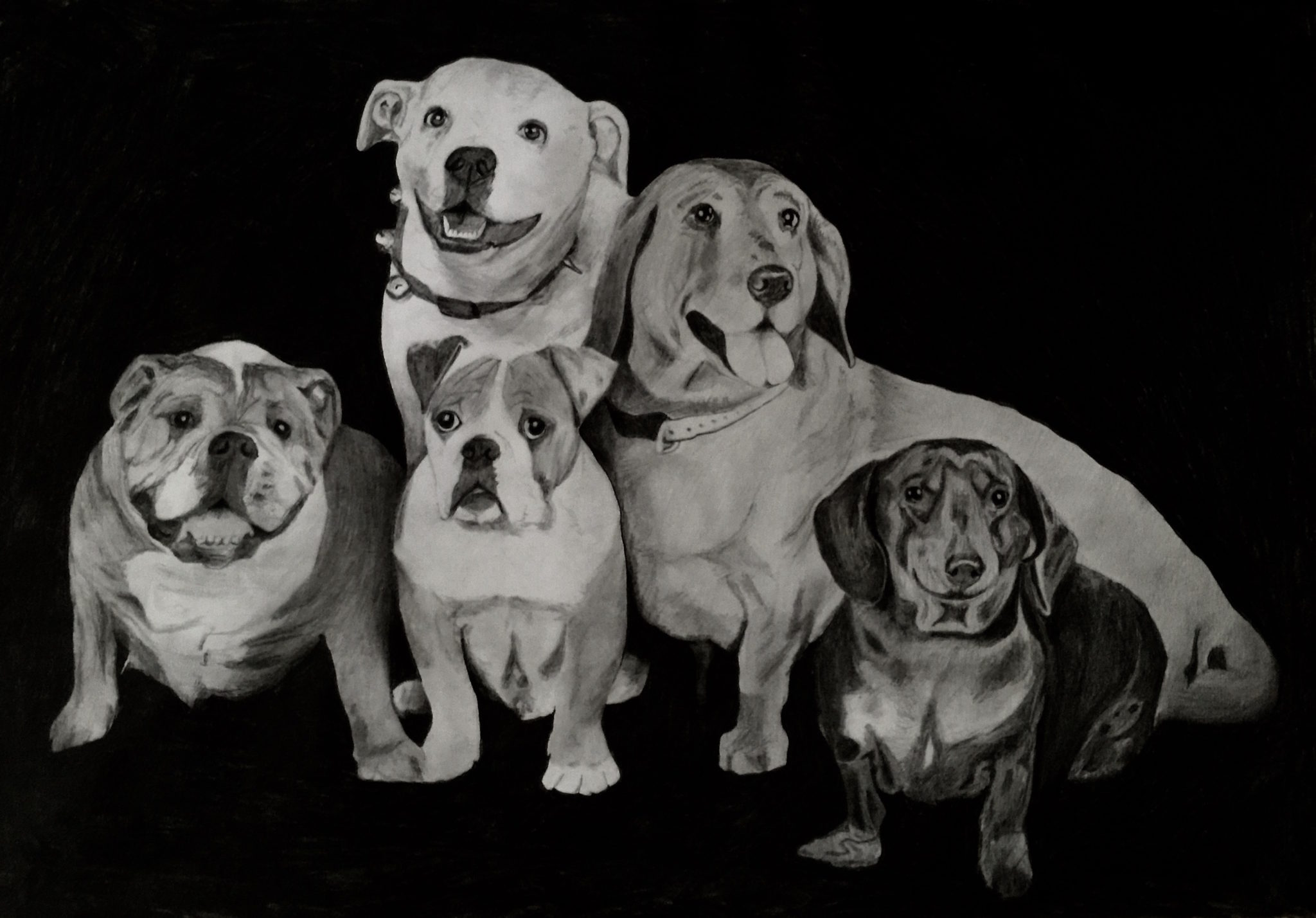 Petsy Portraits